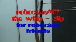 robocane#09