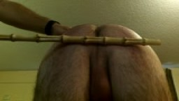 24 strokes of the cane
