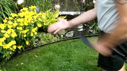 strapping the hand in the yard/garden - profile